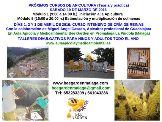 Cartel INICIO2016 curso Bee Garden