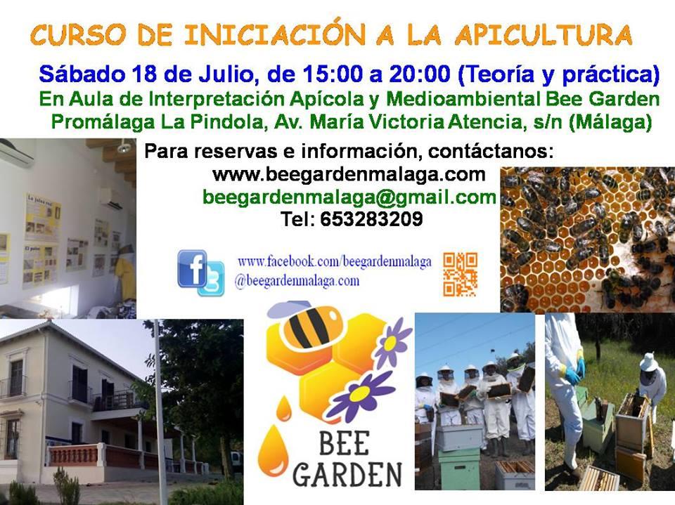 Curso de apicultura en andaluc a cr a de abejas for Oficina ing malaga