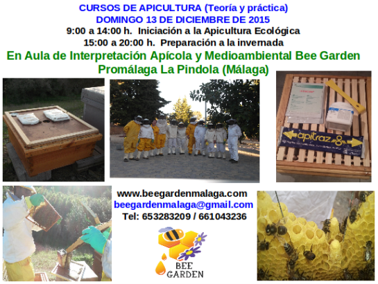 Curso de apicultura Diciembre